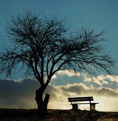 Mentalcoaching bei Verlust